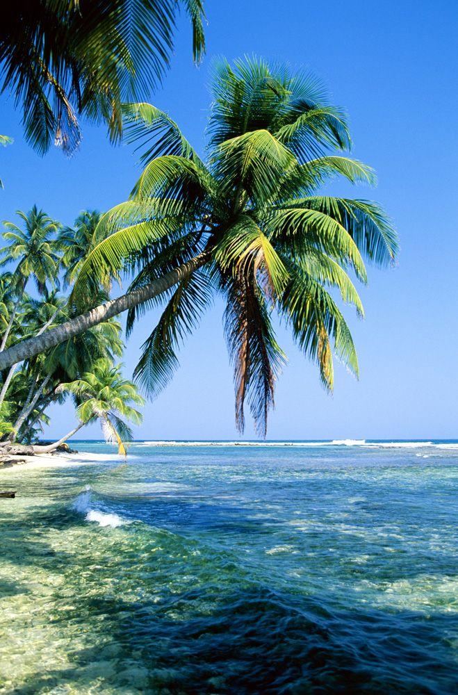 a natureza nos convida a viajar nesta linda paisagem transmite paz e