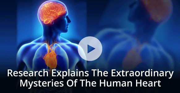 Video Heartmath Institute Explains The Heart Brain Connection Other Extraordinary Facts About The Human Heart Brain Connections Ted Talks Brain