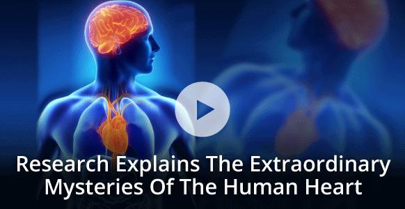 Ted Talk How To Rewire Your Brain Neuroscientist Dr Joe