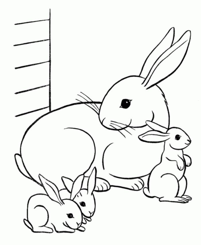 Easter Bunny Family Animal Coloring Pages