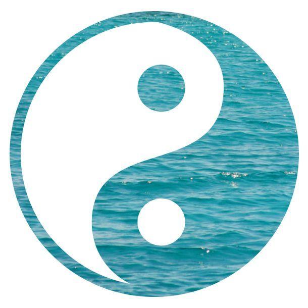 Yin Yang Tumblr Transparent Google Search Yin Yang Ying Yang Yin