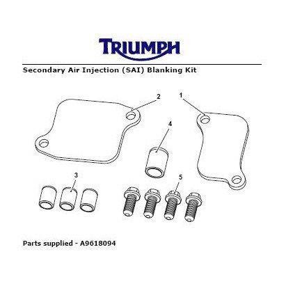 Triumph Daytona 675 Secondary Air Injection Removal Kit
