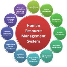 Process Of Human Resource Management System  Human Resource