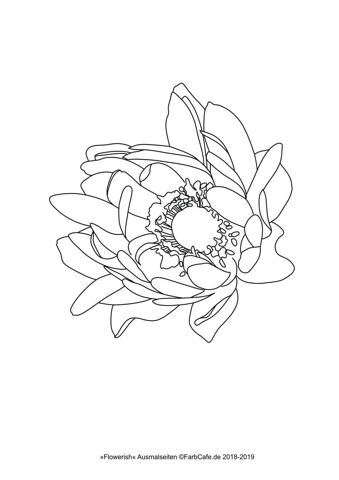Wie Lerne Ich Aquarellmalen Aquarell Fur Anfanger Aquarell Tattoo Roman Arabische Tattoos