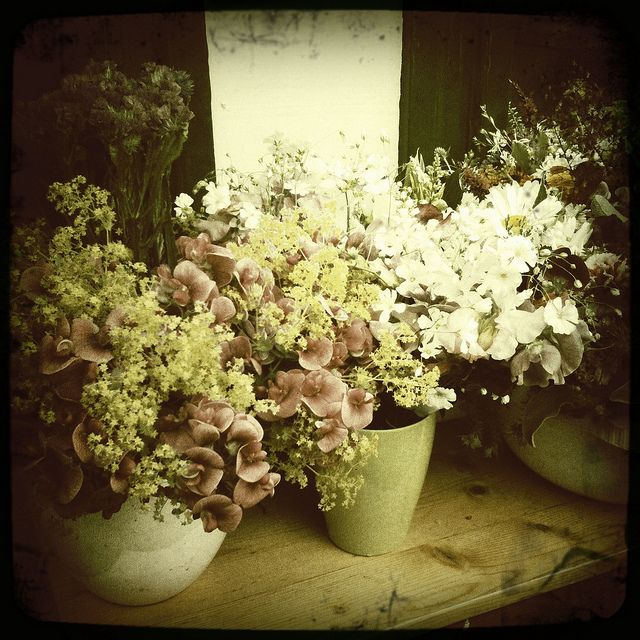 I love using Hipstamatic on my Iphone here I have used Libatique lens and Float film.