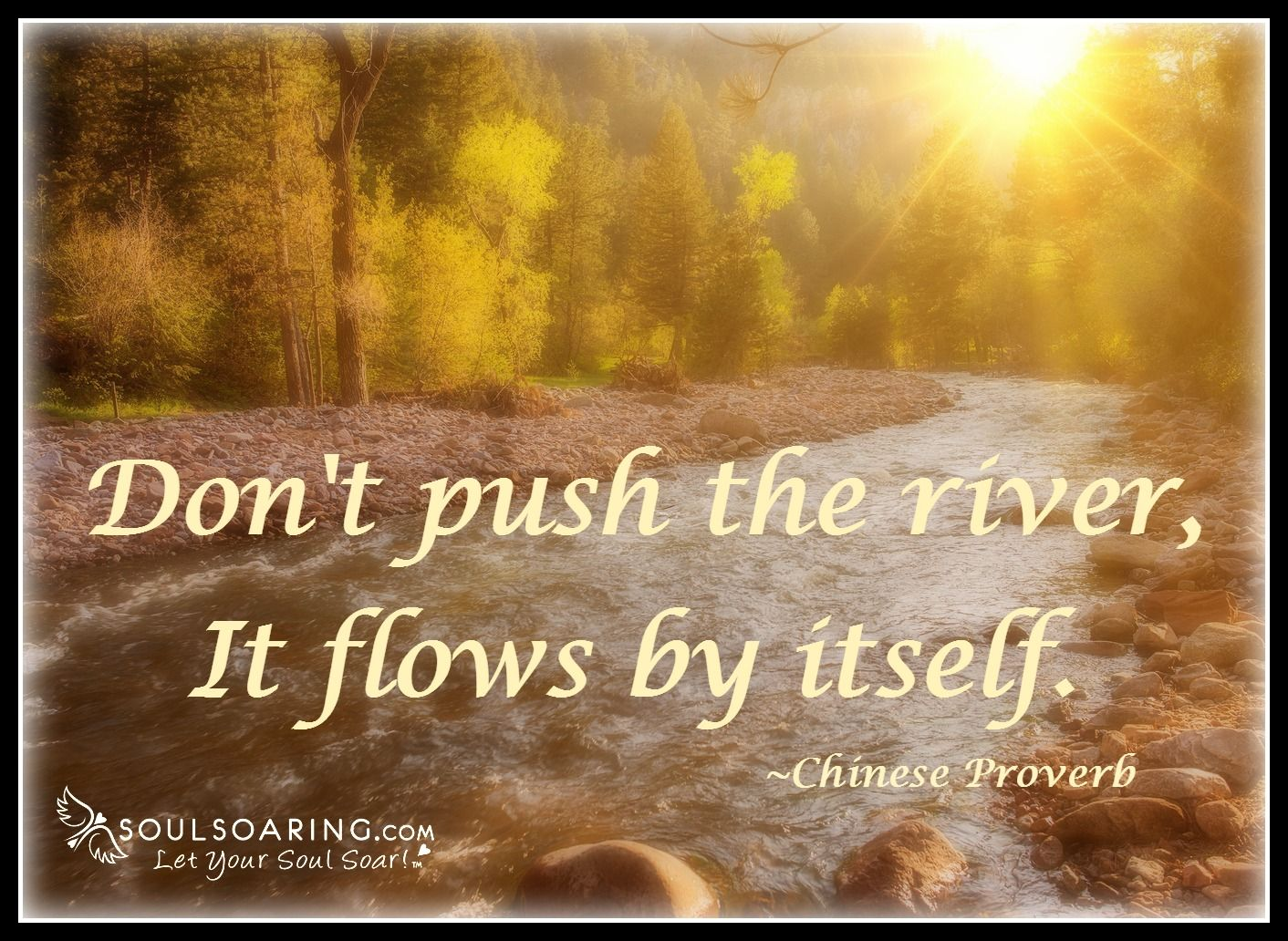 Dont push the river book