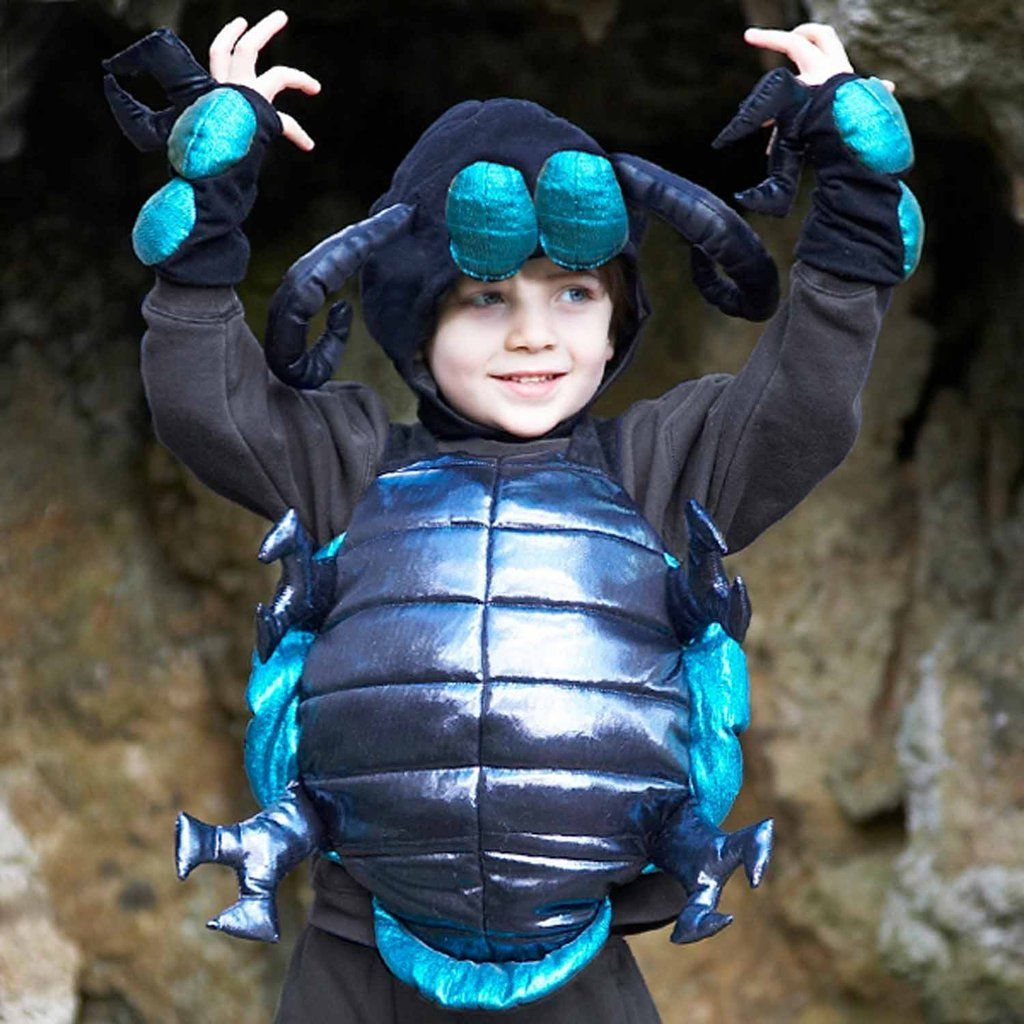Insect Costumes | Biology, Student and Blog