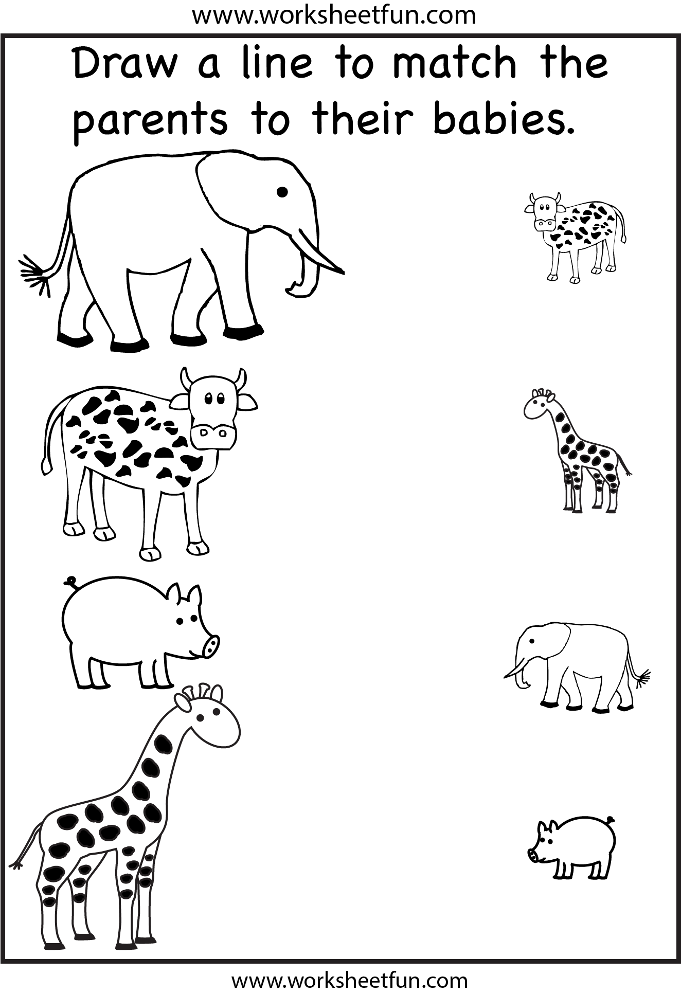 Animal Worksheets For Preschool