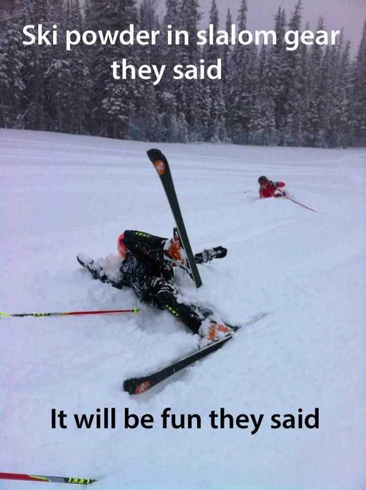 Do You Self A Favor And Get Some Powder Skis Ha Skiing Quotes Skiing Freeride Ski