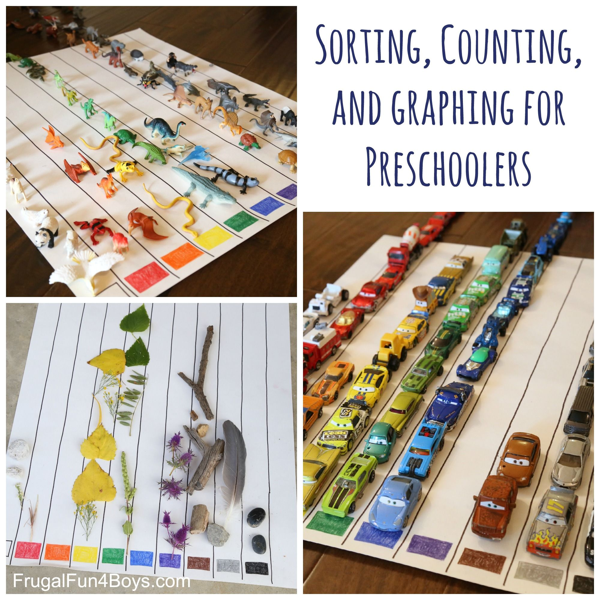 Sorting Counting And Graphing For Preschoolers