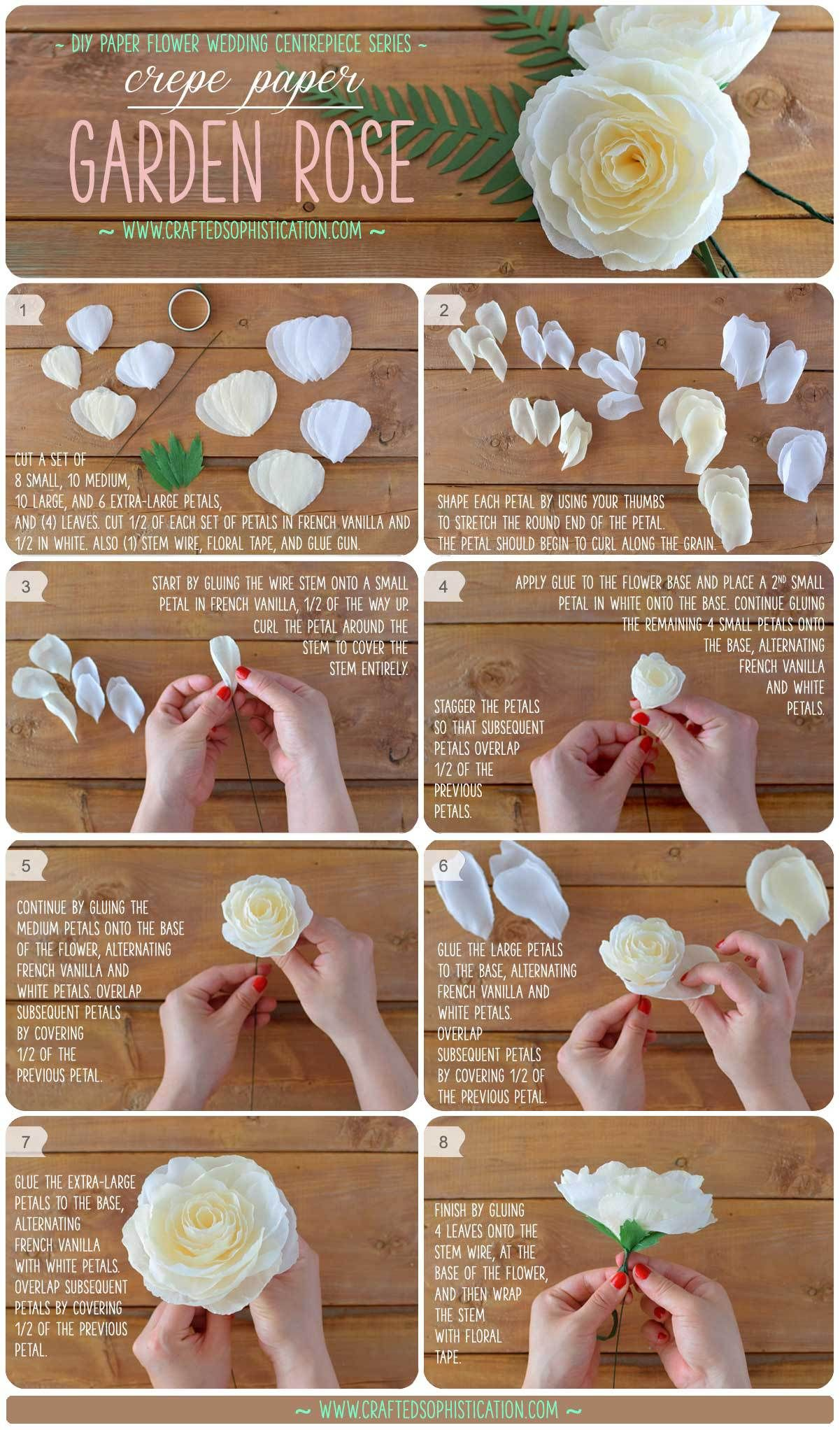 DIY Crepe Paper Garden Rose MakinFlowers Pinterest