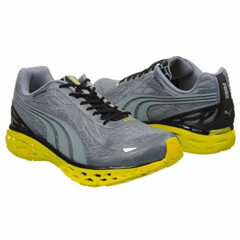 #Puma                     #Kids Boys                #Puma #Kids' #BioWeb #Elite #Shoes #(Tradewinds)    Puma Kids' BioWeb Elite Grd Shoes (Tradewinds)                                http://www.seapai.com/product.aspx?PID=5883564