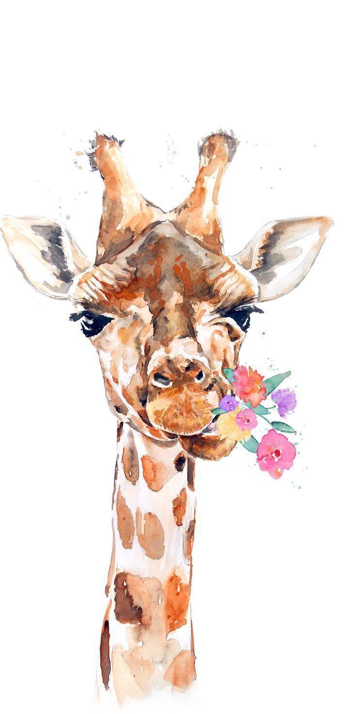Animalwallpaperiphoneart Animalbackgroundiphone Animalwallpaperiphon Anke Schroder Animalw Giraffe Art Giraffe Painting Animal Wallpaper