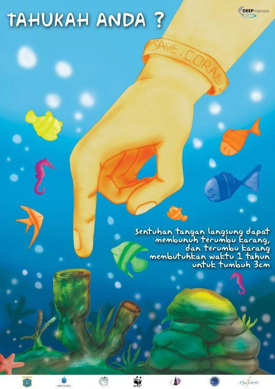 Save Coral Reef