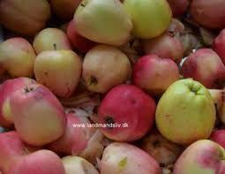 Billedresultat for gammeldags æblekage