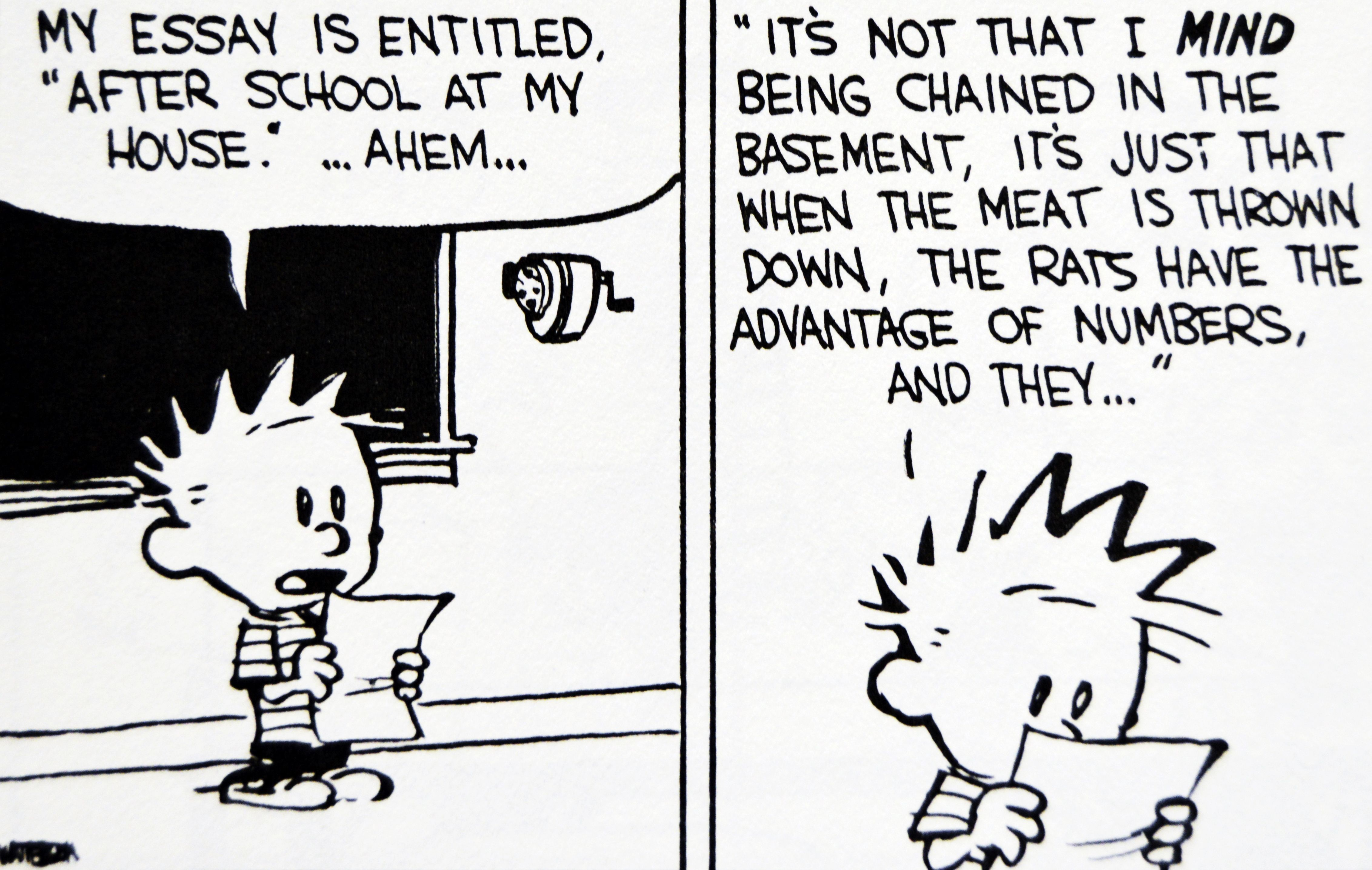 calvin and hobbes essay writing