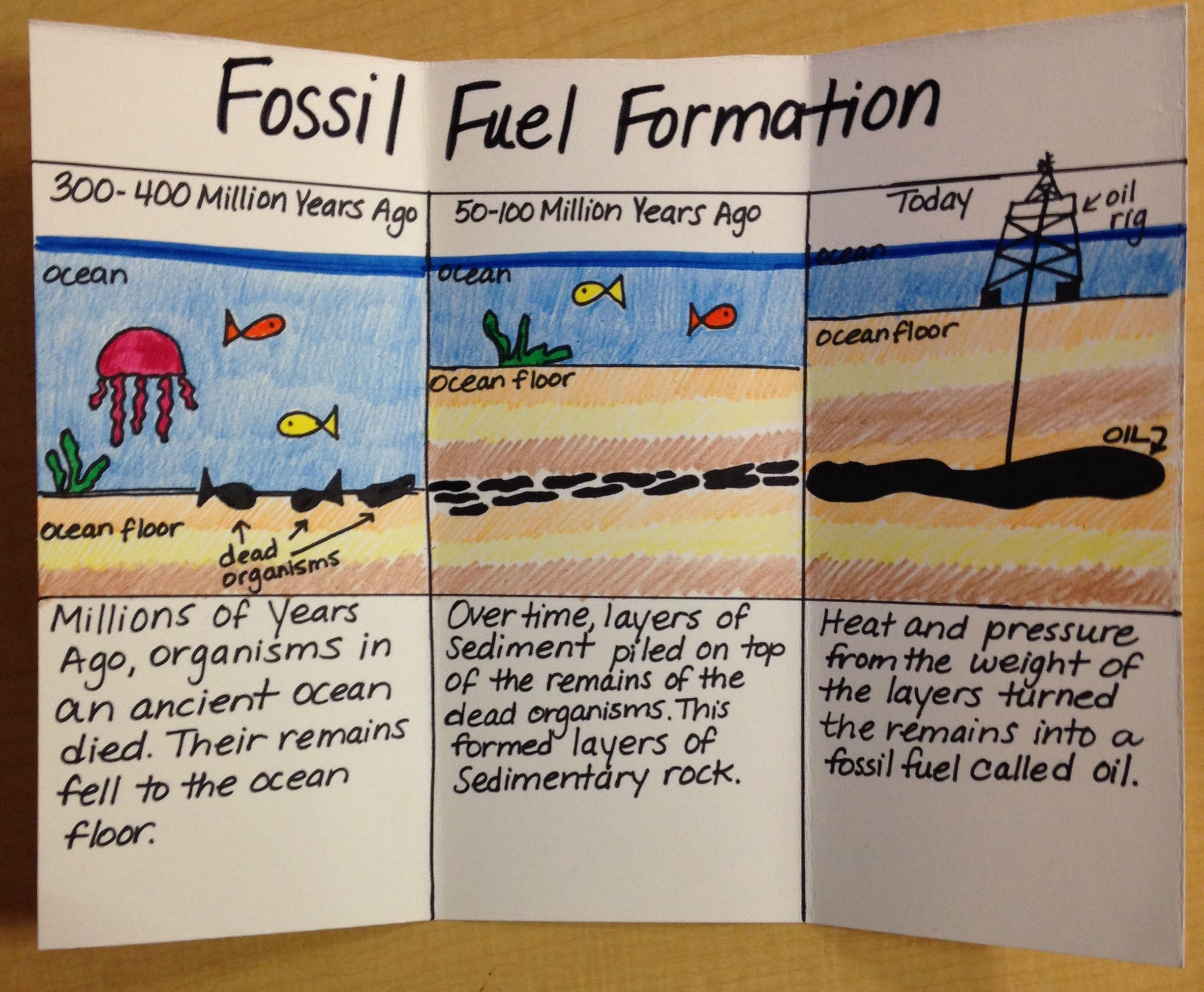 Fossil Fuel Formation Homeschool Science Science Classroom 5th Grade Science