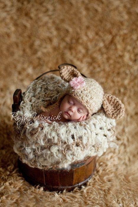 PDF Instant Download Easy Crochet Pattern No 229 Little Lamb photo ...