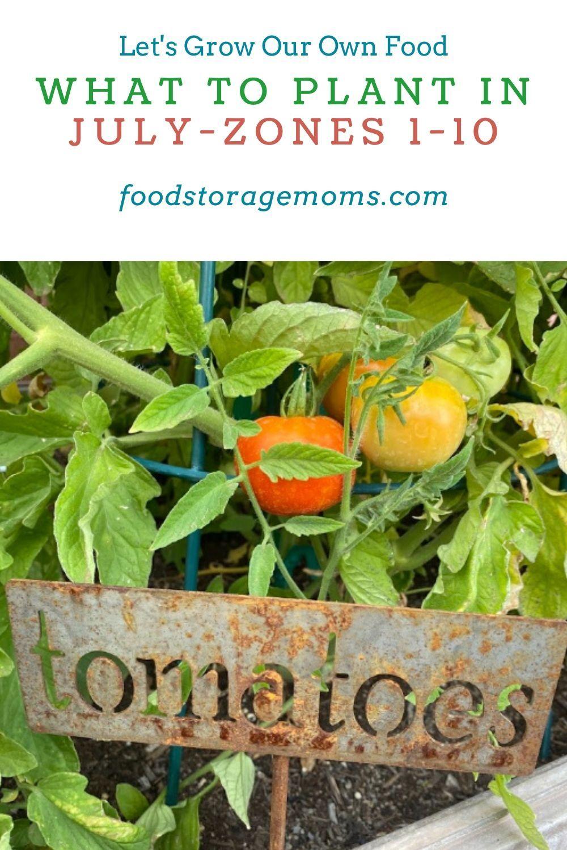 Pin On Growing Food Fsm