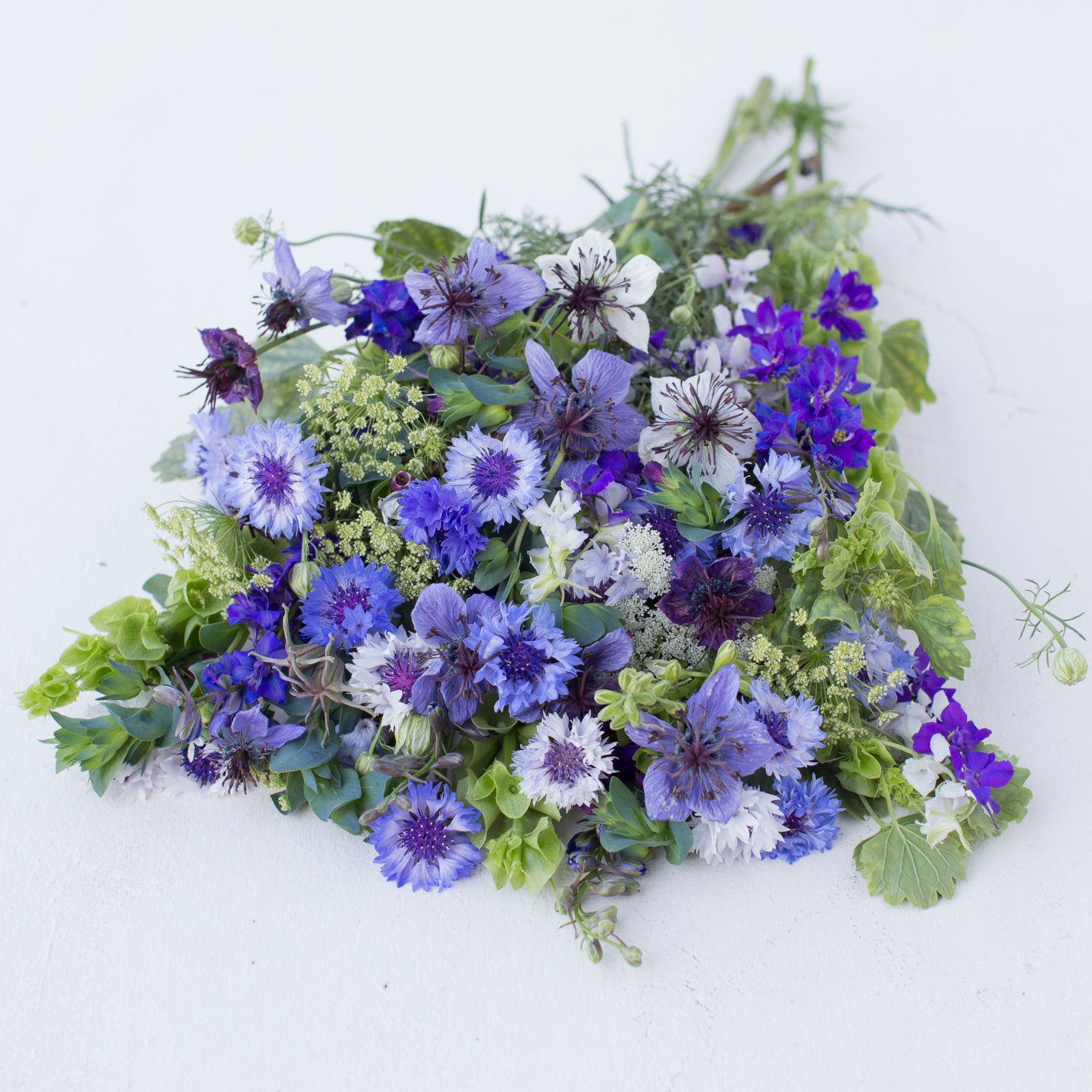 Welcome spring with these hardy annual flowers flowers seeds and welcome spring with these hardy annual flowers izmirmasajfo