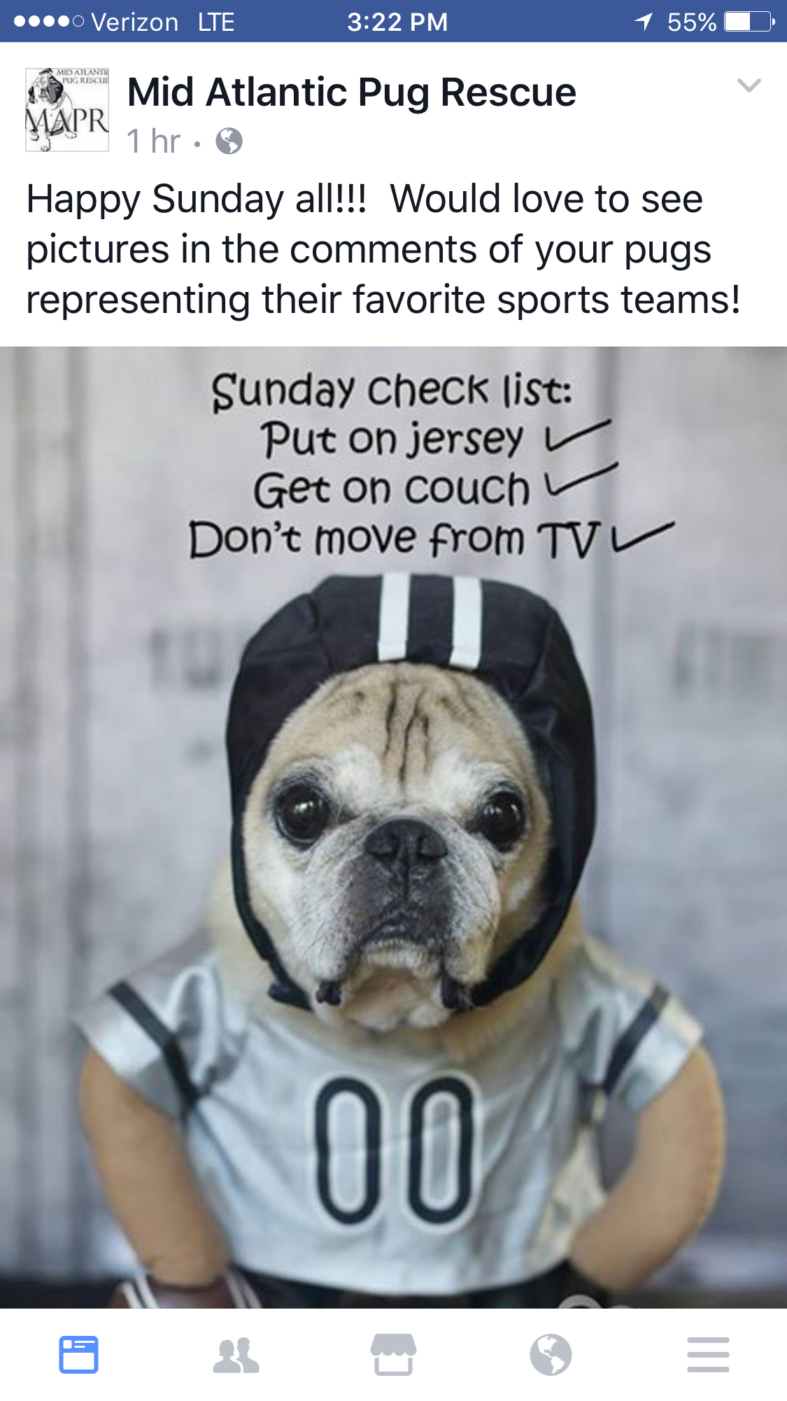 Image by Debbie Parker on Letterboard Pug rescue, Happy