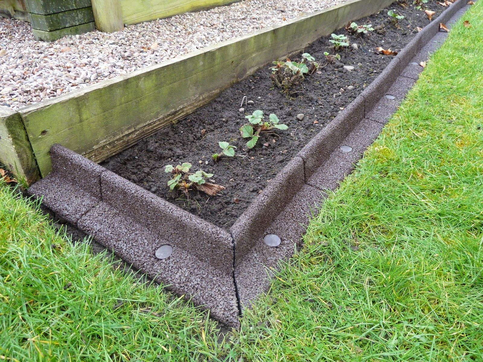 Creating A Lawn Border For My Strawberry Bed Review Of Ecoborder
