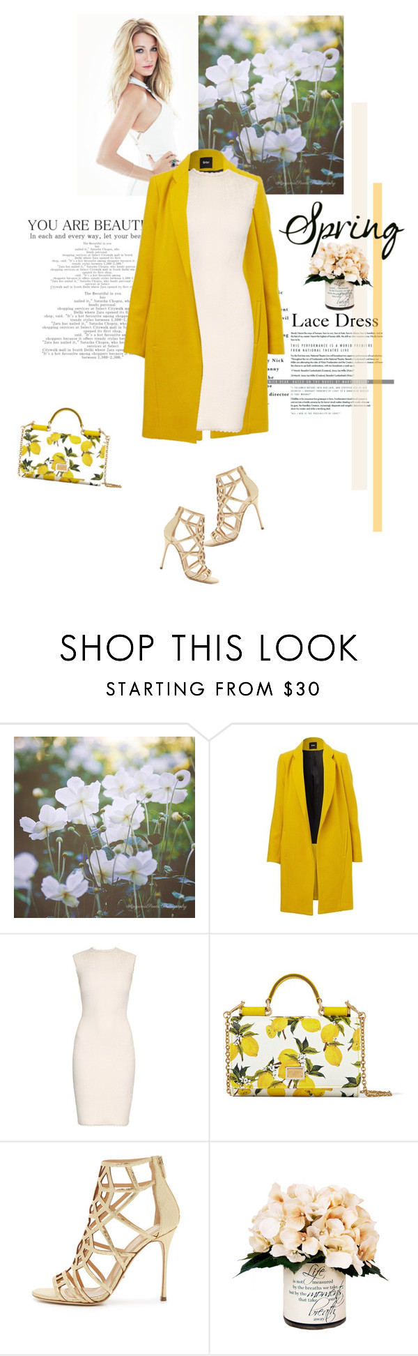 """""""Lovely Lace Dress"""" by mycherryblossom on Polyvore featuring Alexander McQueen, Dolce&Gabbana, Sergio Rossi and Creative Displays"""