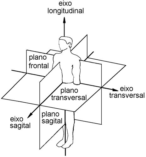 eixos/planos | Medicina | Pinterest | Planos, Anatomía y Fisioterapia