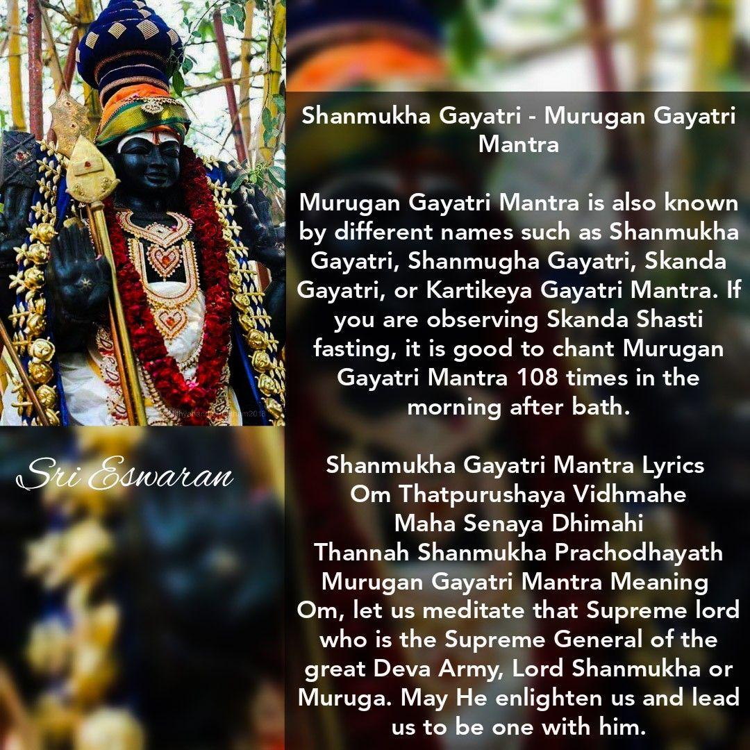 Shanmukha Gayatri - Murugan Gayatri Mantra Murugan Gayatri Mantra is