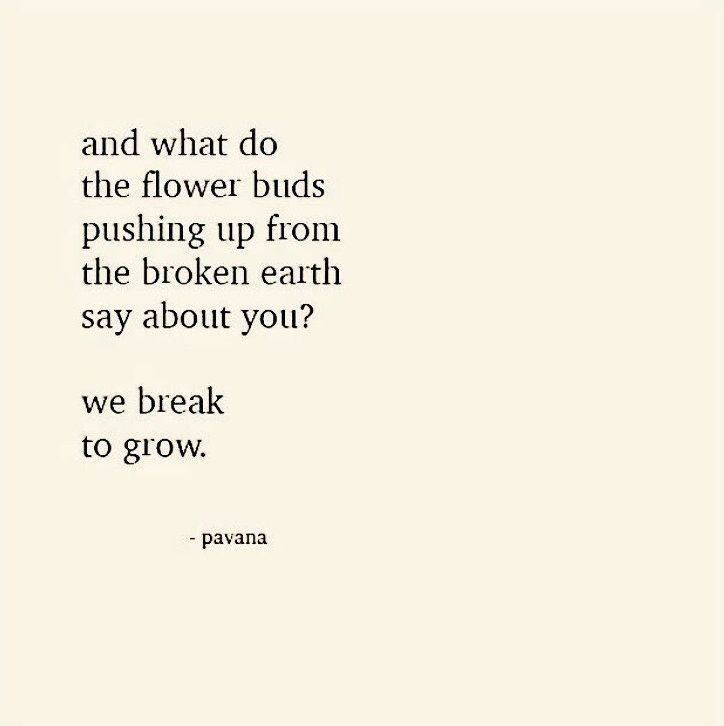 Quotes Inspirational Grow Flower Quotesinteresting Pinterest Pin By Inspire On Quotes Pinterest Thoughts Wisdom And