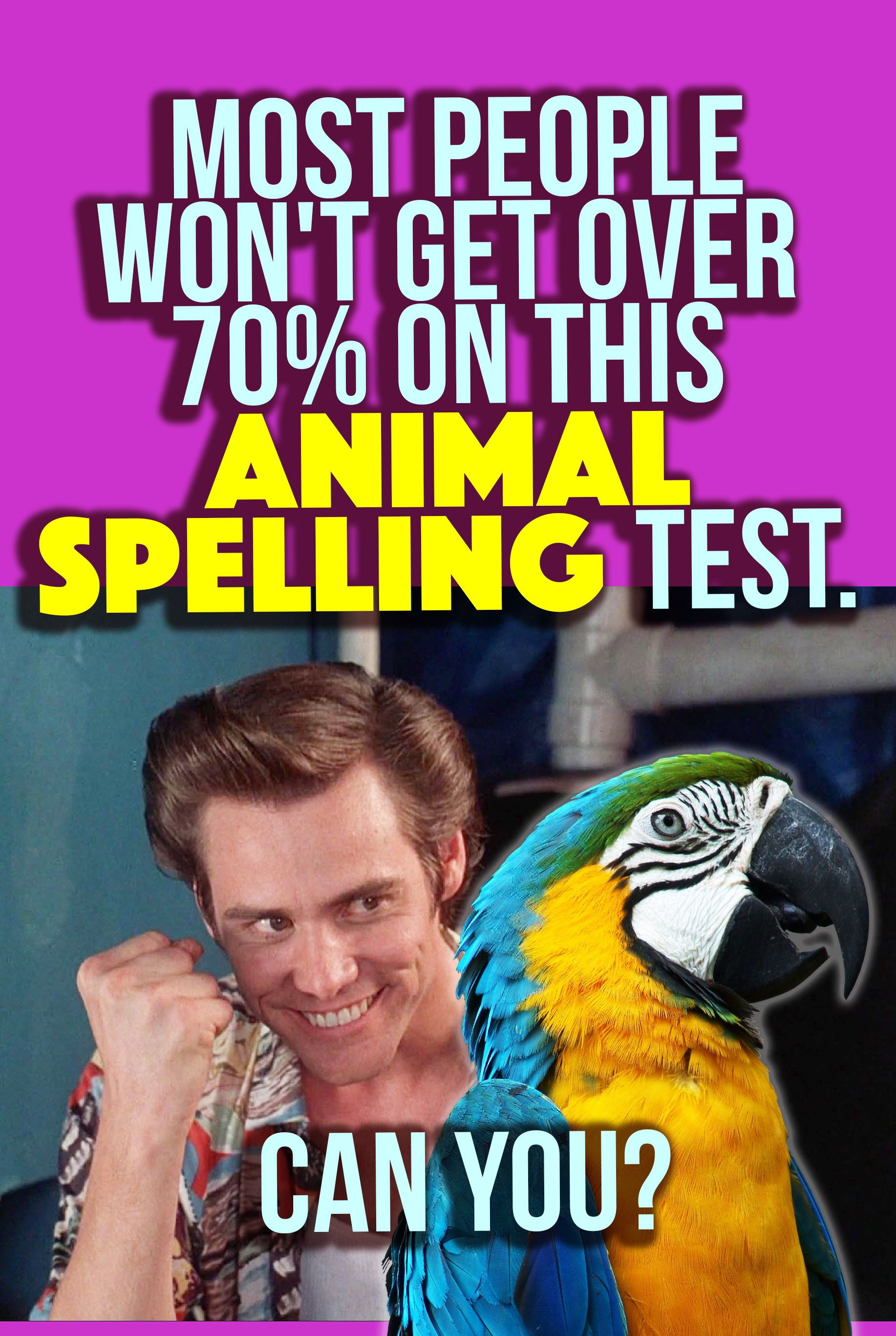 Quiz: Most People Won't Get Over 70% On This Animal Spelling Test