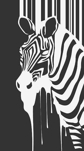 حمار وحشي حمار الحمار الوحشي وحشي الحمار حمار الوحش الحيوانات مروع راري الاسود اسود هجوم الأس Wallpaper Iphone 4s Iphone Wallpaper Iphone Wallpaper Hd Original