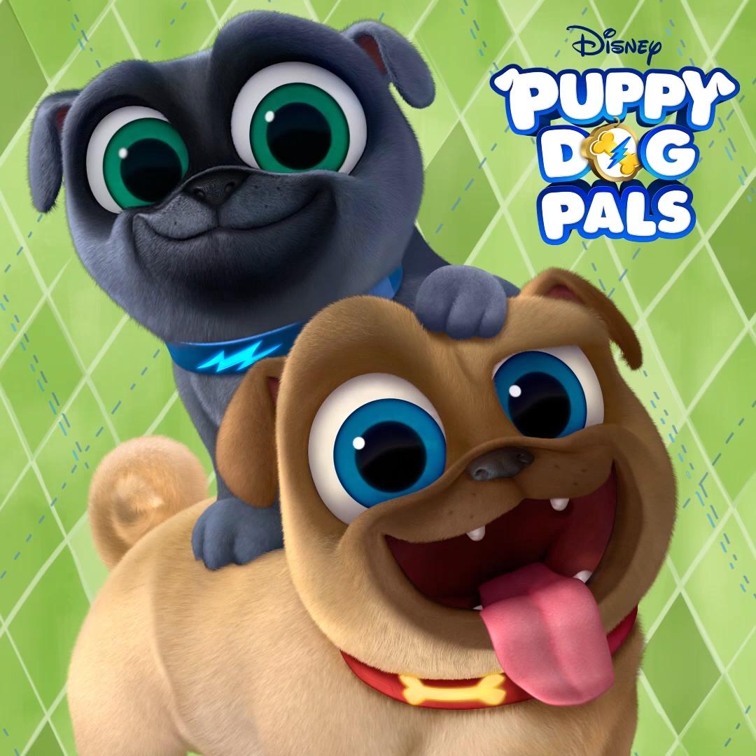 Puppy Dog Pals On Disney Channel The Disney Junior App Join Bingo Rolly On All Their Crazy Adventures Disney Junior Dog Birthday Party Puppies