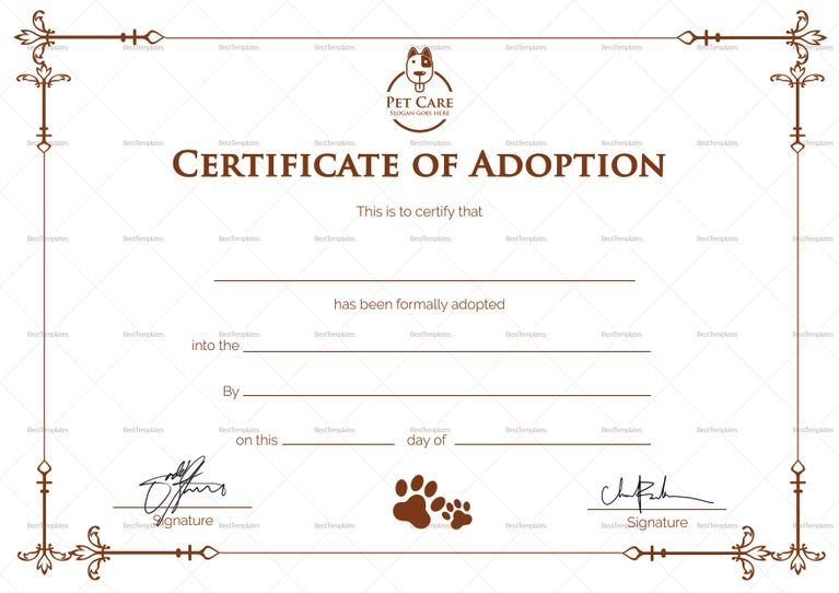 Sample Adoption Certificate Template Adoption Certificate
