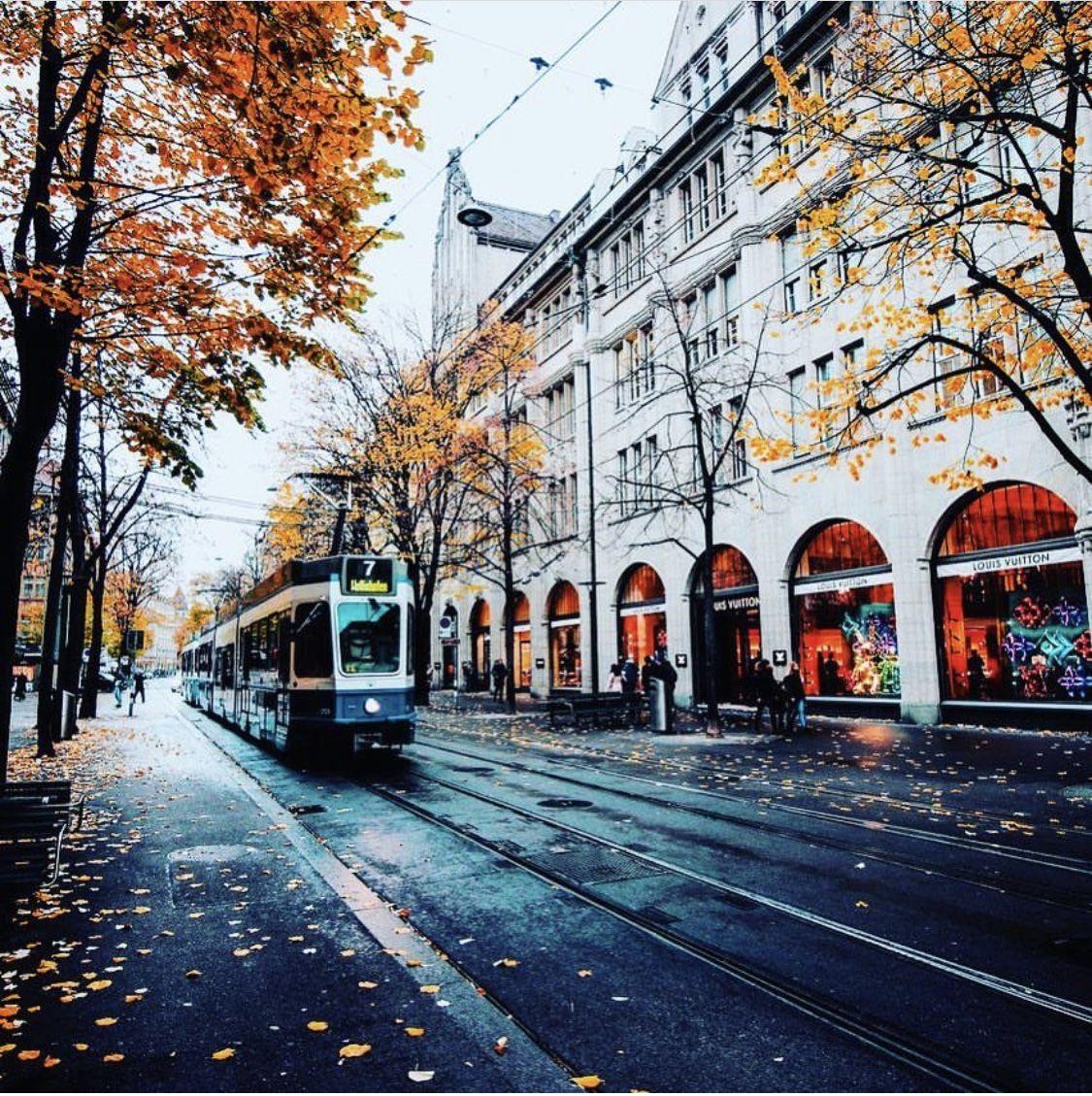路線電車 秋 雨 街中 落ち葉 風景 街角フォト 落ち葉