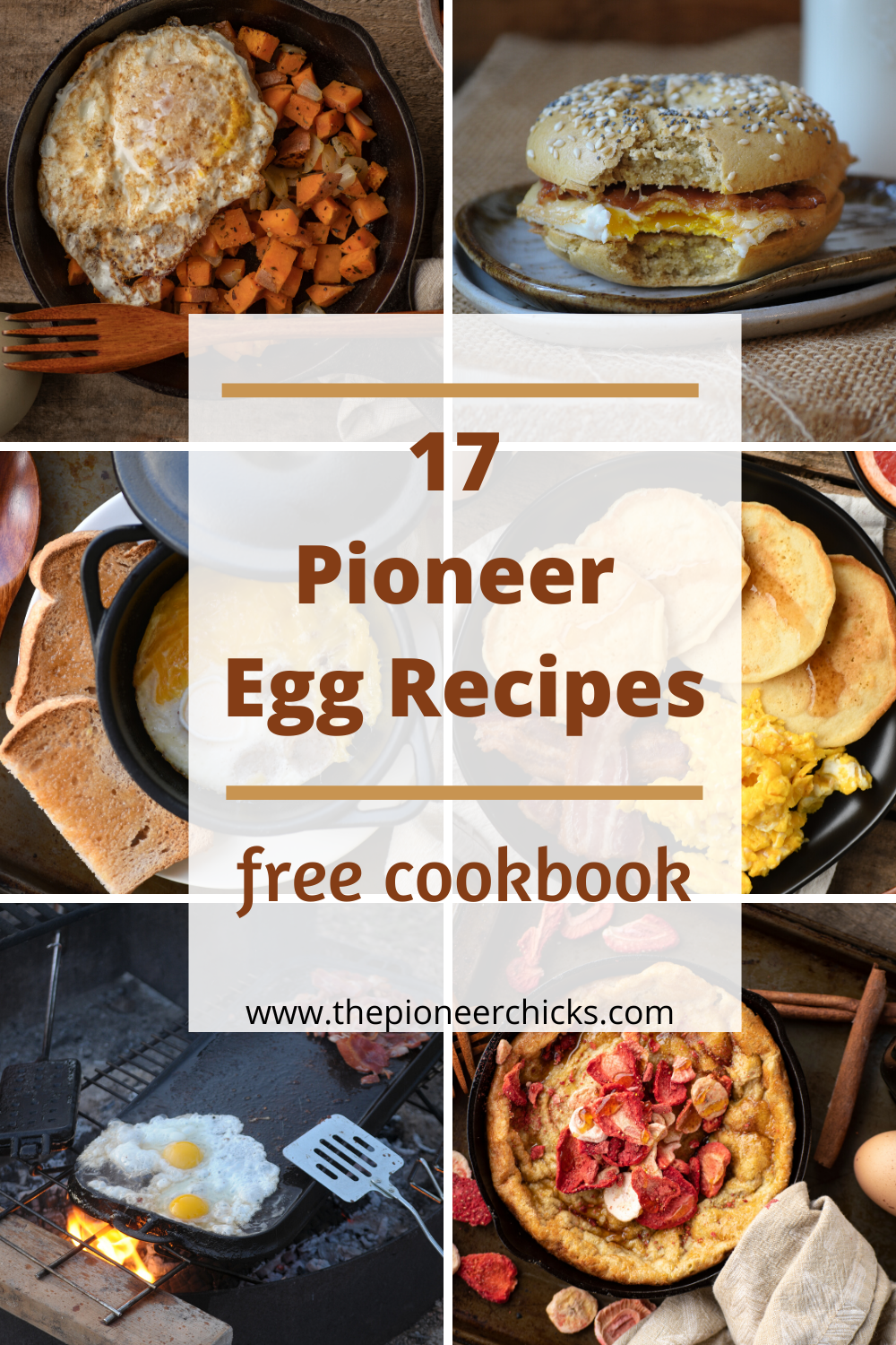 Modern Pioneer Starter Package The Pioneer Chicks Recipes Cookbook Recipes Cooking Recipes