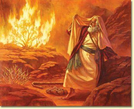 The burning bush! | Bible pictures, Biblical art, Bible art