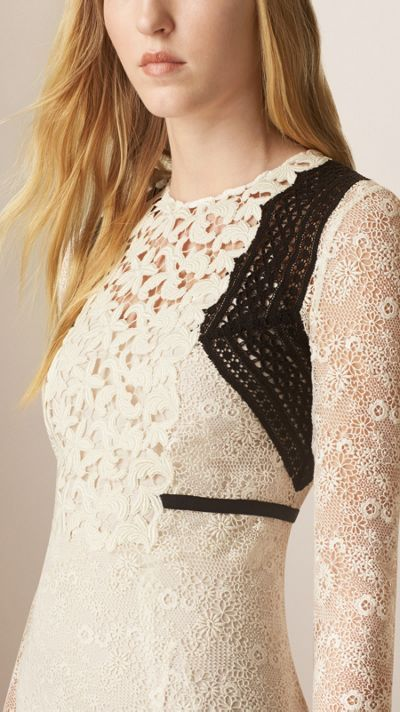 Floral Lace and Mesh A-Line Dress