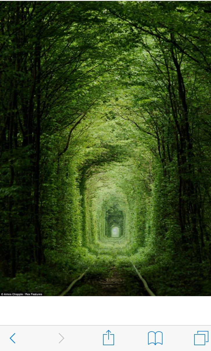 I would love to walk through this.