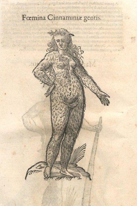 Drawings of Ulisse Aldrovandi
