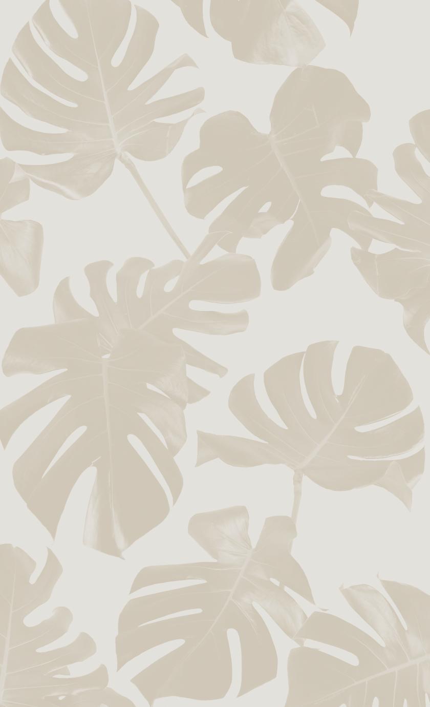 Basic Monstera Leaf Traditional Prepasted Wallpaper Samantha Santana In 2021 Beautiful Wallpapers Backgrounds Pretty Wallpapers Cute Wallpaper Backgrounds