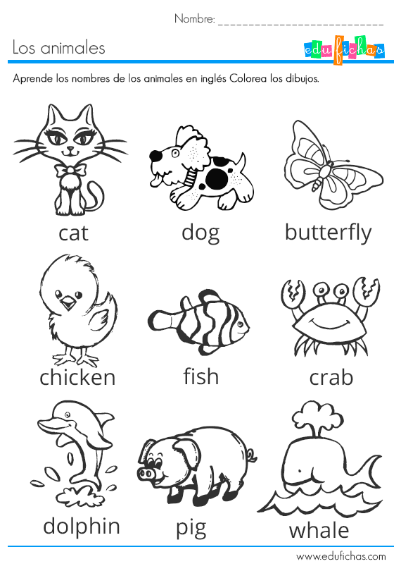 los animales en ingles | English | Pinterest | Fichas ingles ...
