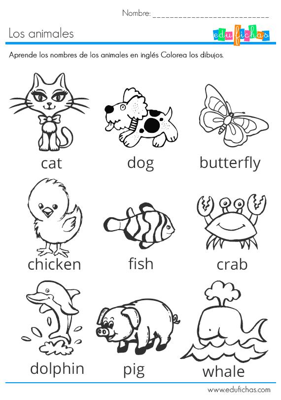 los animales en ingles  English  Pinterest  English English