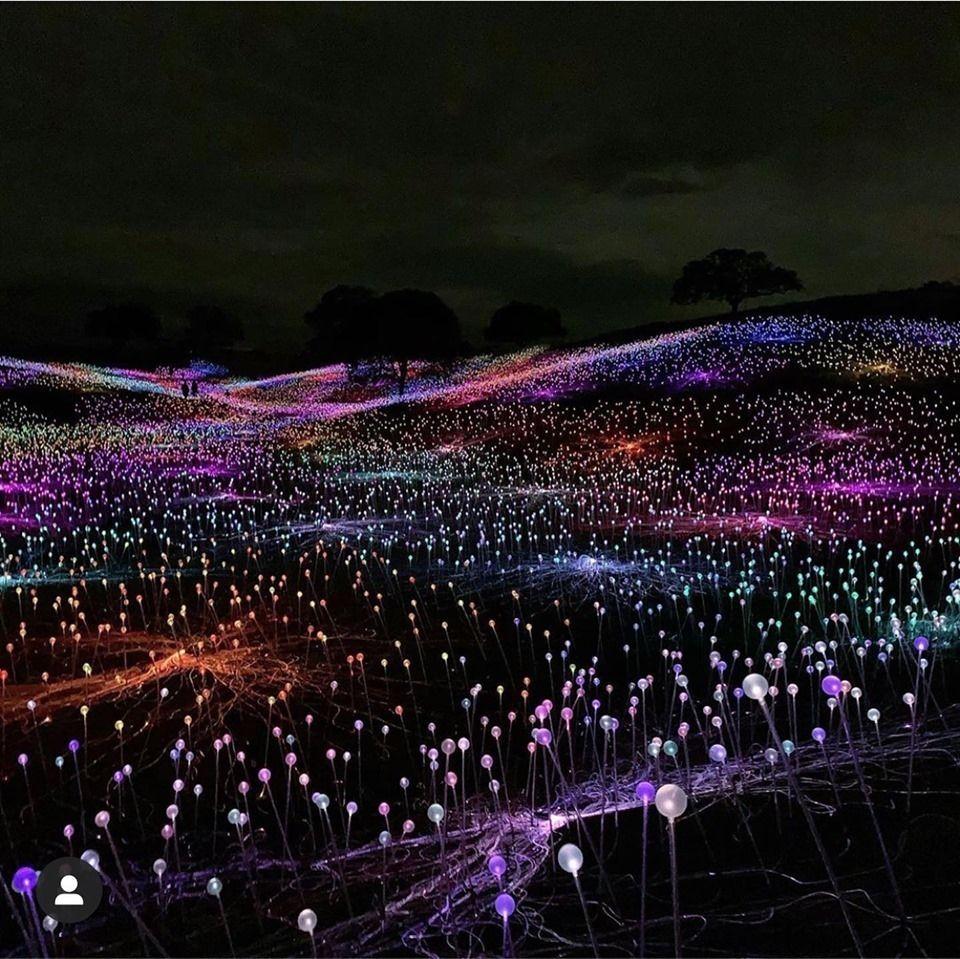 Bruce Munro Field of Light at Sensorio, Paso Robles, CA