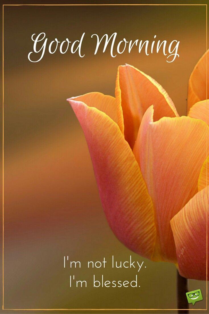 Good morning vasu pinterest blessings qoutes and morning 96b3d0a9011104c0a1b1f3ef6bebbcd7g m4hsunfo
