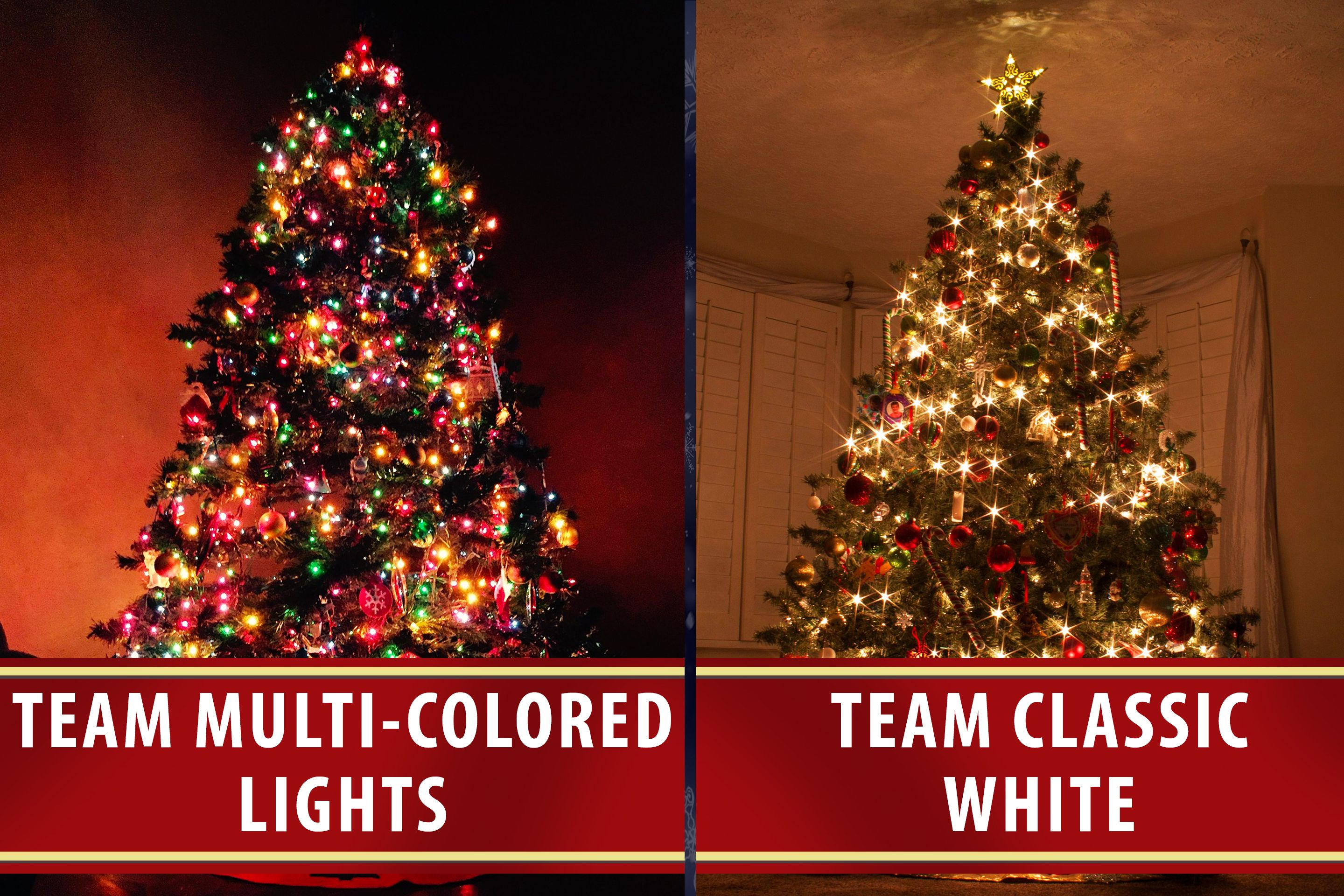 Pick A Side How Do You Light Your Christmas Tree Are You Teamclassicwhite Or Teammulticoloredlights Christmas Lights Christmas Unique Christmas Trees