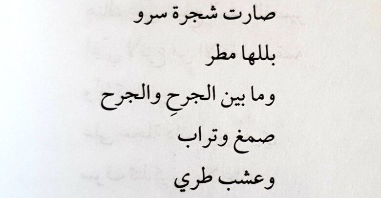 قصيدة عن المرأة وأروع أشعار الغزل ووصف النساء Arabic Calligraphy Calligraphy