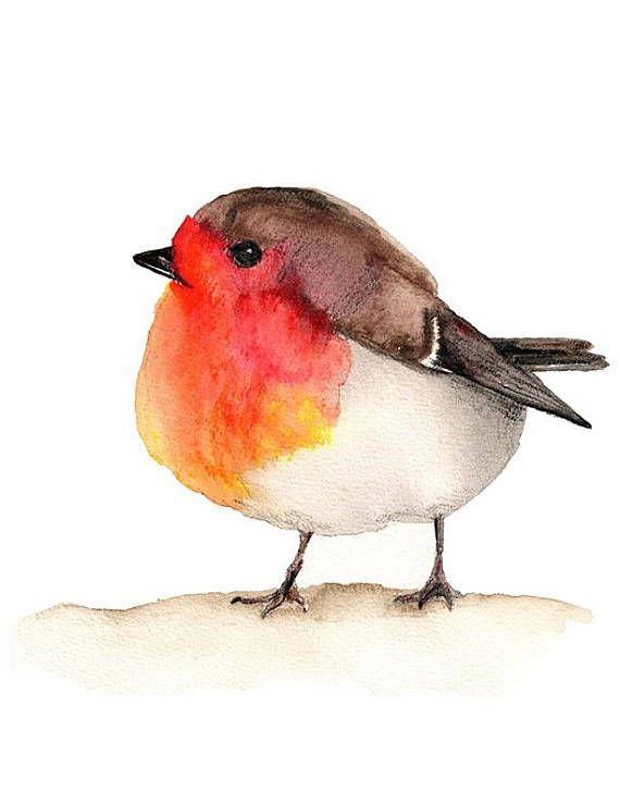 Robin Watercolor Instant Download Aquarell Kunst Aquarell Ideen