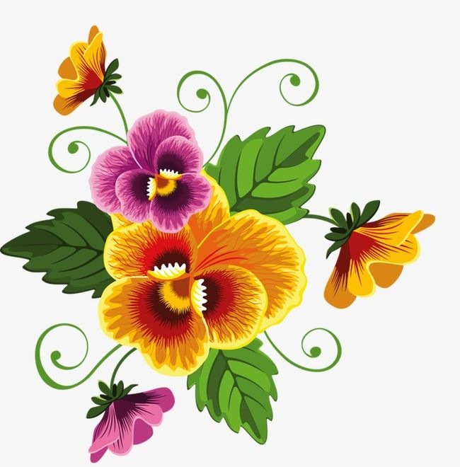 Pansy Flower Painting Floral Border Design Pansies