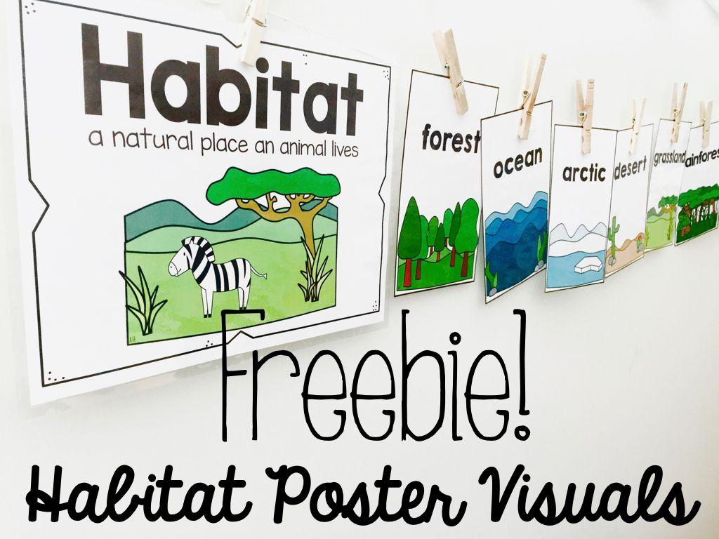 Habitats Poster Cards